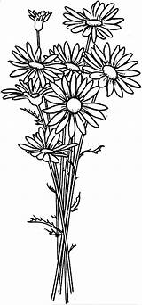 Coloring Flower Daisy Arrangement Flowers Drawing Printable Colouring Sheets Simple Colornimbus Drawings Nature Colorful Templates Patterns sketch template