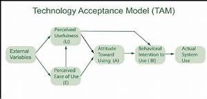 Original Technology Acceptance Model  Tam