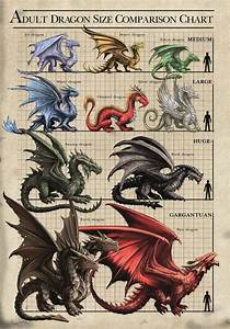 Size Chart Dragons Card Dragon Artwork Dragon Pictures