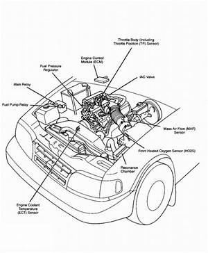 2011 Kia Sportage Engine Diagram Wiringdiagramfreee Antennablu It