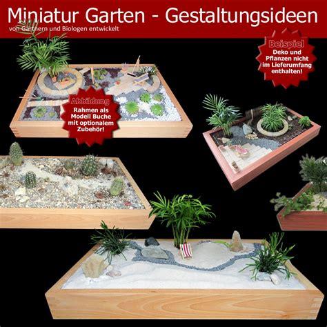 Garten Pflanzen Zubehör by Minigarten Einen Miniatur Zimmer Garten Gestalten