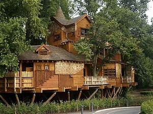 Ideas : Unique Cool Tree Houses Design Ideas Outlines ...