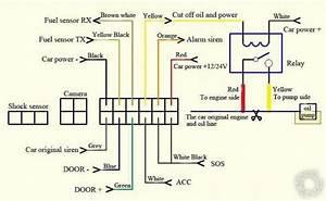 Kia Sportage Starter Wiring Diagram 26060 Netsonda Es