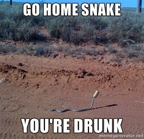 Funny Snake Memes - 31 most funny snake meme pictures and images