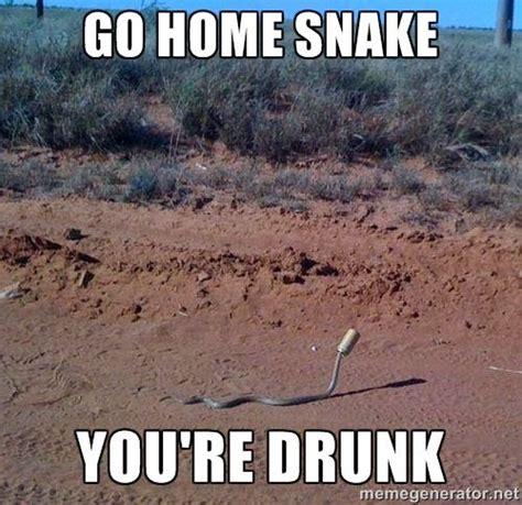Snake Memes - snake meme snake memes are awesome funny pinterest home awesome and meme