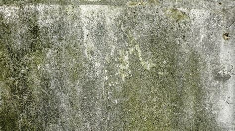 Muffe Sui Muri Interni - come eliminare la muffa dai muri lartedinnovare