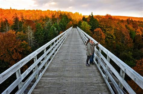 Top 4 Fall Must-Do's in Nova Scotia | Tourism Nova Scotia