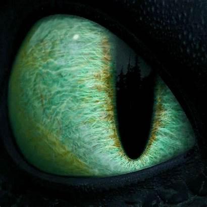 Dragon Fury Eye Night Animation Train Dream