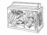 Coloring Aquarium Fish Acquario Colorare Kolorowanki Tank Akwarium Bestcoloringpagesforkids Disegni Dzieci Dla Piccolo Pets Goldfish Saltwater sketch template