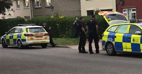 Pictures Show Police And Dog Unit Descend On Chelmsford