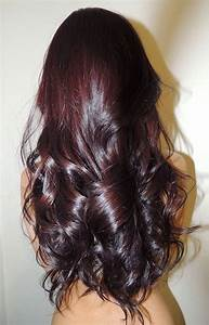The gallery for --> Dark Red Purple Brown Hair Color
