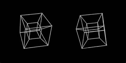 3d Double Vision Lacma Exhibition Exhibitions Animation