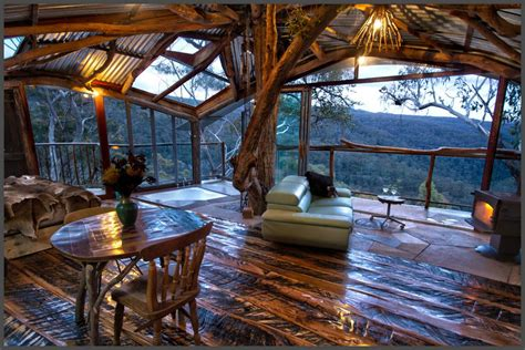 blue mountain cottage 6 amazing treehouses you can rent in australia