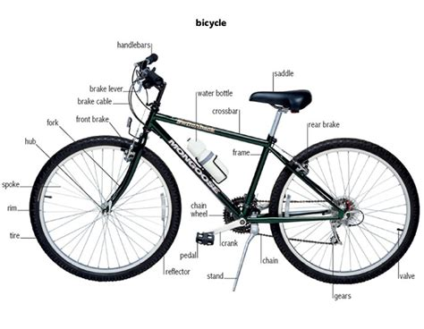 Bicycle Bicycle Definition