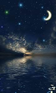 Beautiful night sky with a lot of stars | Stock Photo ...