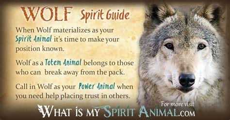 Spirit, Totem & Power Animal
