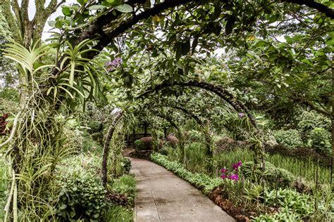 Botanischer Garten Singapur Weltkulturerbe by Singapur Top 10 Sehensw 252 Rdigkeiten Highlights F 252 R Deinen