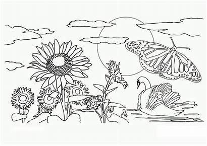 Coloring Nature Realistic Pages Printable Adults Getcolorings