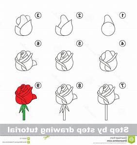 Step By Step Drawing Flowers Rose Simple Rose Drawing Step ...