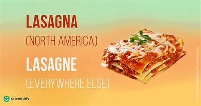 Lasagna Spell Lasagne Spelling American Dish Grammarly