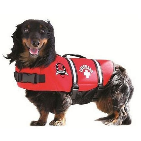 hundeschwimmweste lifeguard hunderettungsweste