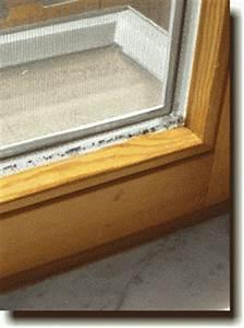 Schimmel Am Fenster Entfernen : alles ber schimmel und dessen vermeidung in der wohnung und am arbeitsplatz ~ Whattoseeinmadrid.com Haus und Dekorationen