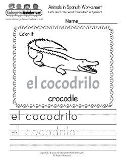 kindergarten spanish worksheets learning  basics