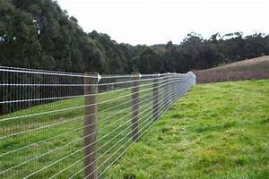 attractive dog fencing or skip the top board all With attractive dog fence