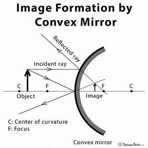35 Convex Mirror Ray Diagram
