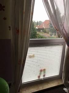 Sichtschutz Für Bodentiefe Fenster : sichtschutz f r bodentiefes fenster unser plissee licht in 2019 bodentiefe fenster fenster ~ Watch28wear.com Haus und Dekorationen