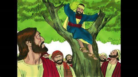 zacchaeus   sycamore tree tax collector eats