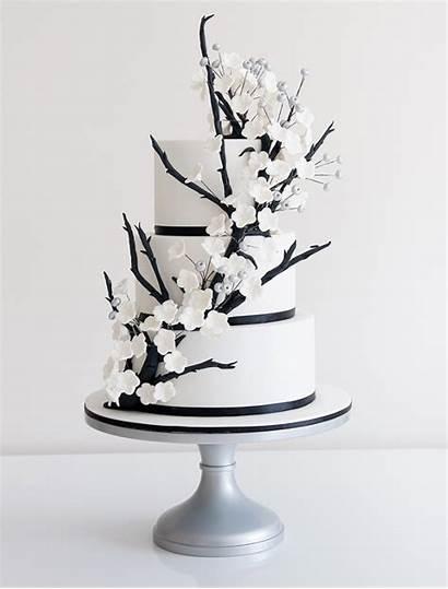 Cake Cakes Flowers Pasteles Elegant Unique Boda