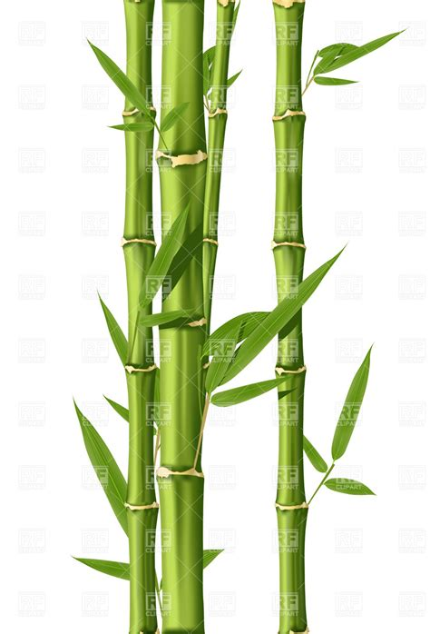complete house plans green bamboo stems royalty free vector clip image