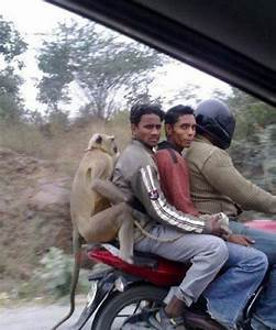 21 Pictures Of Things That Happen Only In India ...