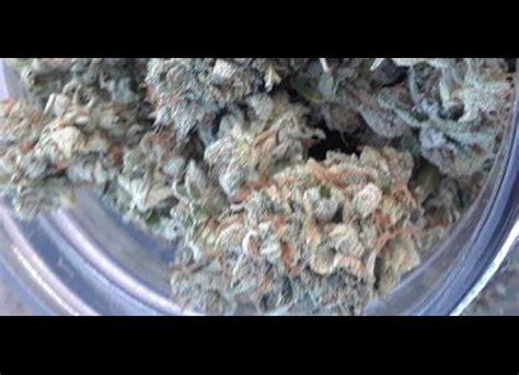 marijuana strain list budtrader