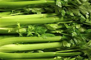 Celery  Planting  Growing  And Harvesting Celery Stalks