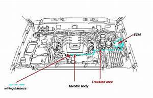 1998 Isuzu Rodeo Engine Diagram