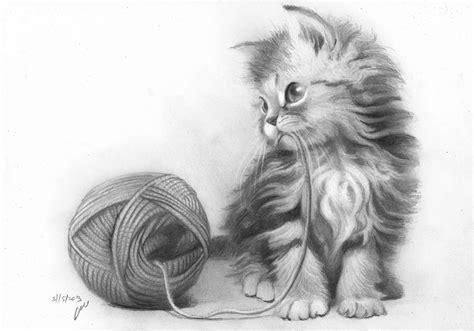 pencil drawings kitten pencil drawing  roni yoffe