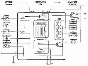 Sensores 1 - E-auto Com Mx