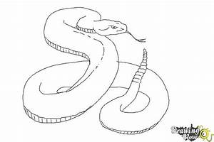 How To Draw A Realistic Snake Drawingnow
