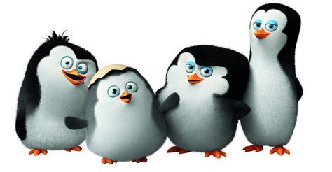 wallpaper penguins  madagascar cute penguin cartoon