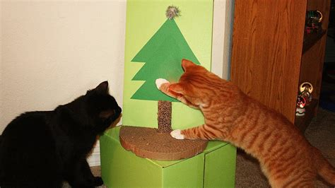 cat proof christmas tree doovi