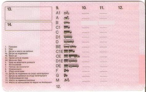 Driving Licence In The Republic Of Macedonia