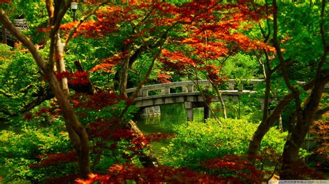 zen japanese garden kyoto wallpapersafari