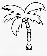 Palm Tree Coloring Line Clipart Outline Palmera Colorear Dibujo Ultra Drawing Kindpng Pinclipart Dlf Pt Pngkit sketch template