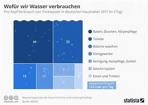 Infografik  Wof U00fcr Wir Wasser Verbrauchen