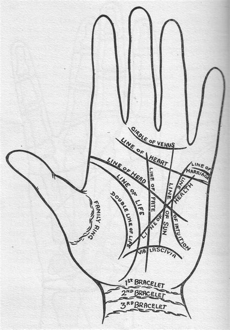 The Major Lines: What do they mean?The hand contains 6