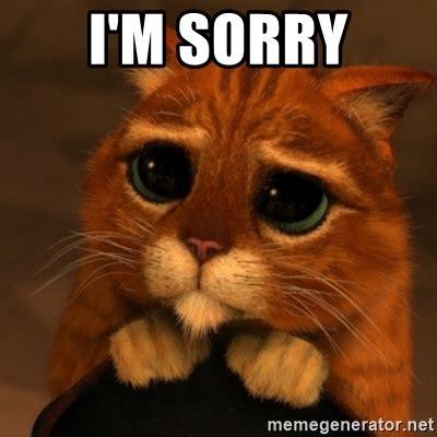 Sorry Meme - i m sorry shrek cat v1 meme generator