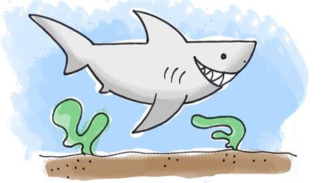 draw  cartoon shark drawing pinterest shark