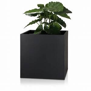 Blumenkübel Groß Günstig : pflanzk bel gro cubo 60 fiberglas blumenk bel schwarz ~ Markanthonyermac.com Haus und Dekorationen
